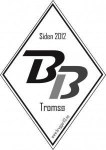 Bryggeri 13 Diamant 3 farger[7]